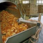 Подмосковье будет производить мексиканские лепешки и чипсы