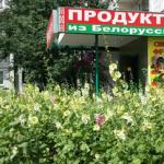 Белоруссия выставила России счета за молоко в долларах