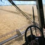 Павленко рассказал о роли аграрного экспорта в украинской экономике