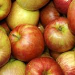Россия вернула Белоруссии 130 тонн овощей и фруктов