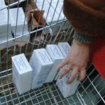 Роспотребнадзор не ограничит продажу украинской и белорусской соли