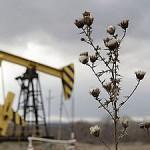Добыча российской нефти на рекордной высоте