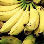 Мексика начала поставлять в Россию бананы