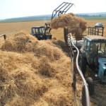 Правительство России выделило средства сельхозпроизводводителям