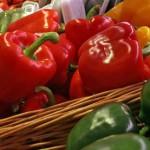 Россия запретила реэкспорт растительной продукции из Болгарии