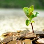 Аграриям перечислено более трети субсидий по краткосрочным кредитам в растениеводстве