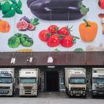 Импорт продуктов в Россию сократился на 42 процента