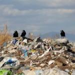 Новые назначения и свалки: Татарстан 2 июня